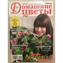 Домашние цветы  №9 сентябрь...